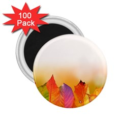 Autumn Leaves Colorful Fall Foliage 2.25  Magnets (100 pack)