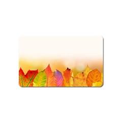 Autumn Leaves Colorful Fall Foliage Magnet (name Card)