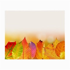 Autumn Leaves Colorful Fall Foliage Small Glasses Cloth