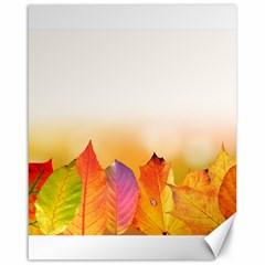 Autumn Leaves Colorful Fall Foliage Canvas 16  X 20