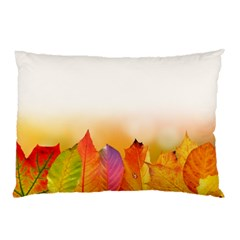 Autumn Leaves Colorful Fall Foliage Pillow Case