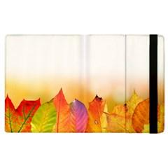 Autumn Leaves Colorful Fall Foliage Apple iPad 3/4 Flip Case