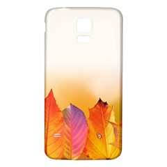 Autumn Leaves Colorful Fall Foliage Samsung Galaxy S5 Back Case (White)