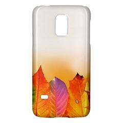 Autumn Leaves Colorful Fall Foliage Galaxy S5 Mini