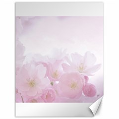 Pink Blossom Bloom Spring Romantic Canvas 12  x 16