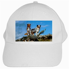 mini Australian Shepherd group White Cap