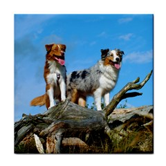 mini Australian Shepherd group Tile Coasters