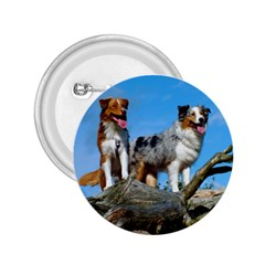 mini Australian Shepherd group 2.25  Buttons