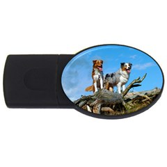 mini Australian Shepherd group USB Flash Drive Oval (2 GB)