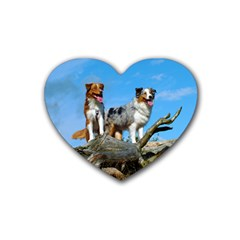 mini Australian Shepherd group Heart Coaster (4 pack)