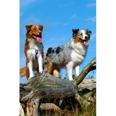 mini Australian Shepherd group 5.5  x 8.5  Notebooks