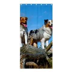 mini Australian Shepherd group Shower Curtain 36  x 72  (Stall)