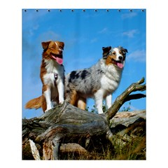 mini Australian Shepherd group Shower Curtain 60  x 72  (Medium)