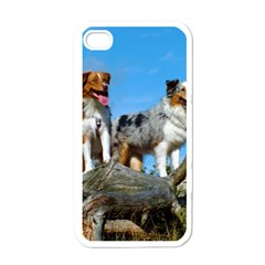 mini Australian Shepherd group Apple iPhone 4 Case (White)