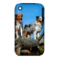 mini Australian Shepherd group iPhone 3S/3GS
