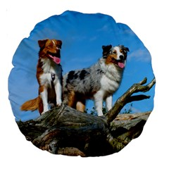 mini Australian Shepherd group Large 18  Premium Round Cushions
