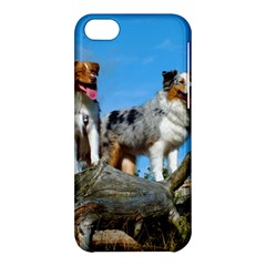 mini Australian Shepherd group Apple iPhone 5C Hardshell Case