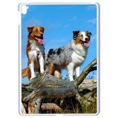 mini Australian Shepherd group Apple iPad Pro 9.7   White Seamless Case