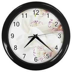 Orchids Flowers White Background Wall Clocks (Black)