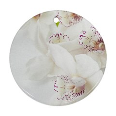 Orchids Flowers White Background Round Ornament (Two Sides)