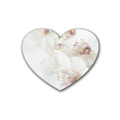 Orchids Flowers White Background Heart Coaster (4 Pack)