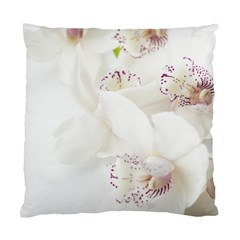 Orchids Flowers White Background Standard Cushion Case (one Side)