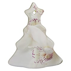 Orchids Flowers White Background Christmas Tree Ornament (Two Sides)