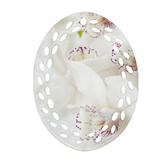 Orchids Flowers White Background Ornament (oval Filigree)