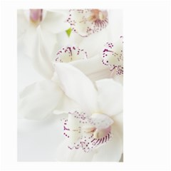 Orchids Flowers White Background Small Garden Flag (two Sides)