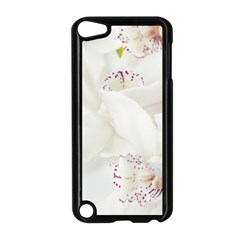 Orchids Flowers White Background Apple iPod Touch 5 Case (Black)