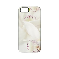 Orchids Flowers White Background Apple Iphone 5 Classic Hardshell Case (pc+silicone)