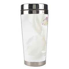 Orchids Flowers White Background Stainless Steel Travel Tumblers