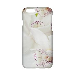 Orchids Flowers White Background Apple Iphone 6/6s Hardshell Case
