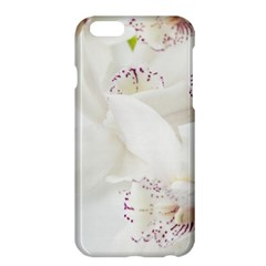 Orchids Flowers White Background Apple Iphone 6 Plus/6s Plus Hardshell Case