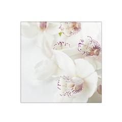 Orchids Flowers White Background Satin Bandana Scarf