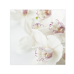 Orchids Flowers White Background Small Satin Scarf (Square)