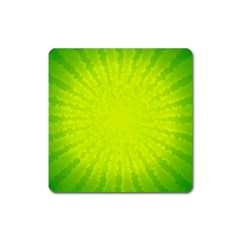 Radial Green Crystals Crystallize Square Magnet