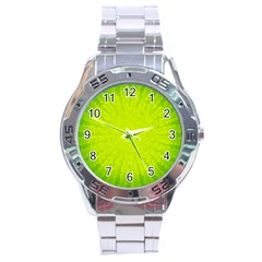 Radial Green Crystals Crystallize Stainless Steel Analogue Watch