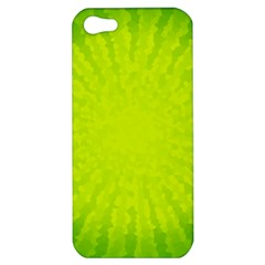 Radial Green Crystals Crystallize Apple Iphone 5 Hardshell Case