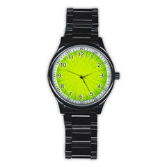 Radial Green Crystals Crystallize Stainless Steel Round Watch