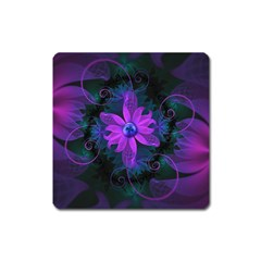 Beautiful Ultraviolet Lilac Orchid Fractal Flowers Square Magnet