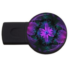 Beautiful Ultraviolet Lilac Orchid Fractal Flowers USB Flash Drive Round (2 GB)