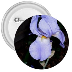 Bearded Iris 3  Buttons