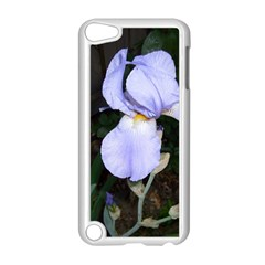 Bearded Iris Apple iPod Touch 5 Case (White)