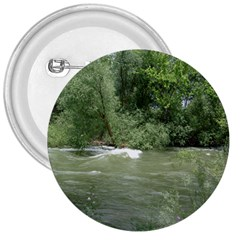 Boise River Gone Wild 2017 3  Buttons