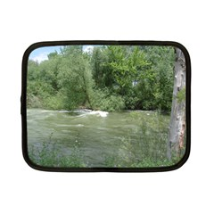 Boise River Gone Wild 2017 Netbook Case (Small)