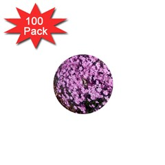 Butterfly On Purple Flowers 1  Mini Magnets (100 pack)