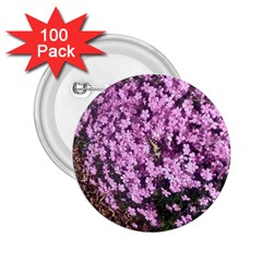 Butterfly On Purple Flowers 2.25  Buttons (100 pack)