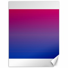 Bi Colors Canvas 12  x 16