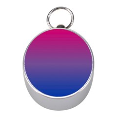 Bi Colors Mini Silver Compasses